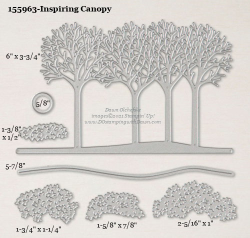 Stampin' Up! Inspiring Canopy Die size shared by Dawn Olchefske #dostamping #stampinup #papercrafting #diecutting #stampindies