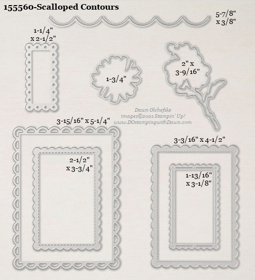 Stampin' Up! Scalloped Contours Die size shared by Dawn Olchefske #dostamping #stampinup #papercrafting #diecutting #stampindies