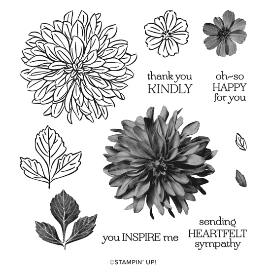 FREE Sale-a-Bration Delicate Dahlias stamp set #dostamping #stampinup