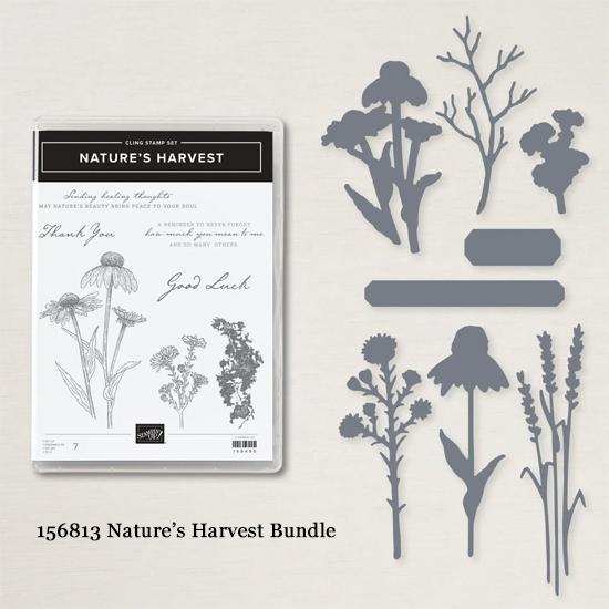 156816 Stampin' Up! Nature's Harvest Bundle #dostamping