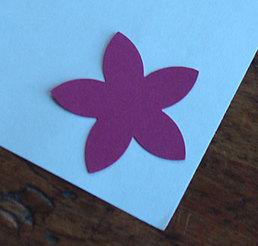 10flower2