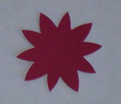 10flower5